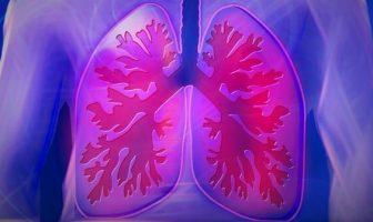 poumons liberer les voies respiratoires