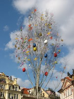 prague paques arbre décoré d'oeufs