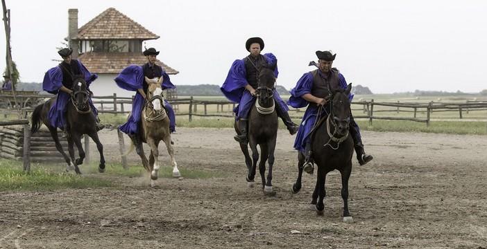 puszta en Hongrie chevaux au parc Hortobagyi