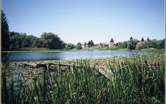 riviere sava lonjsko polje