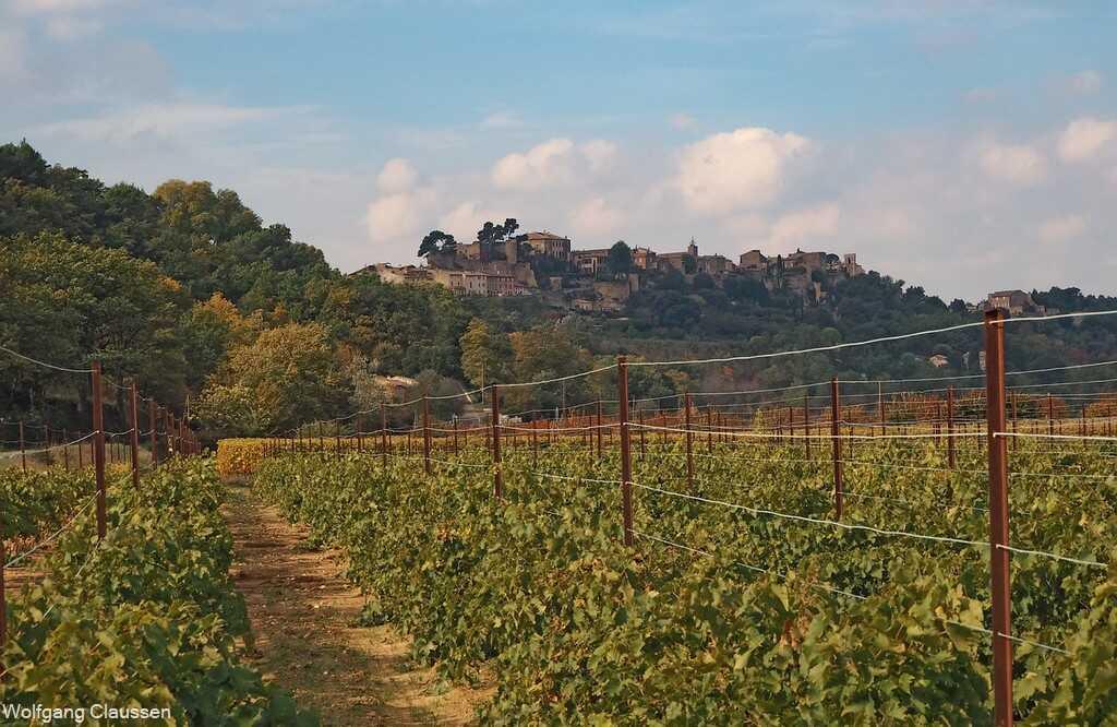 vignoble des vins de provence