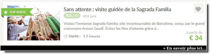 visite guidee sagrada familia barcelone