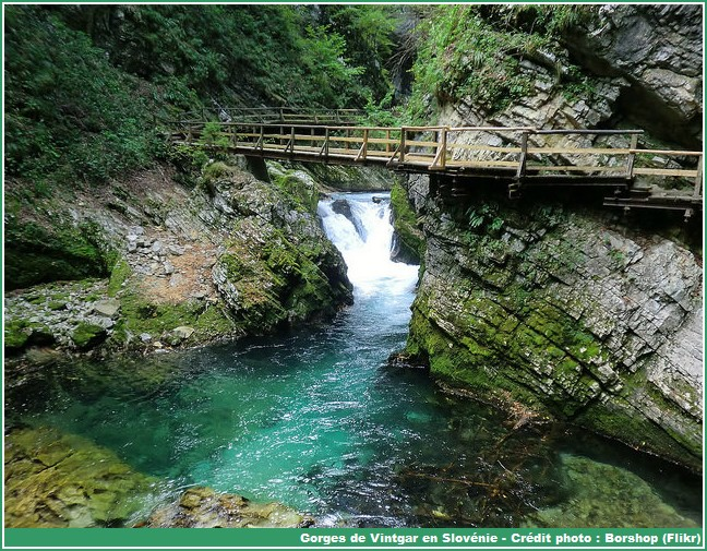 gorges vintgar slovenie