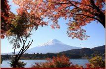mont fuji en automne
