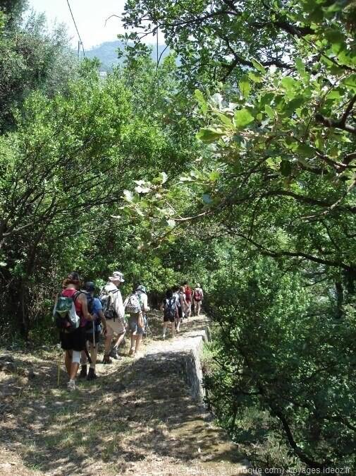 Randonnée à Cinque Terre sur les sentiers du parc national