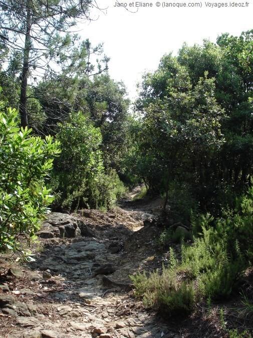 Sentier de Cinque terre vers Deiva Marina