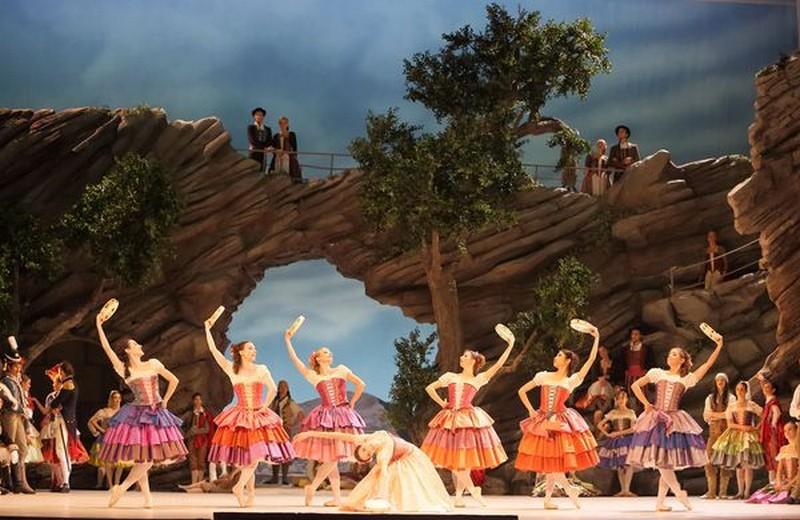 Ballet Munich et scènes de danse : Agenda 2014-2015