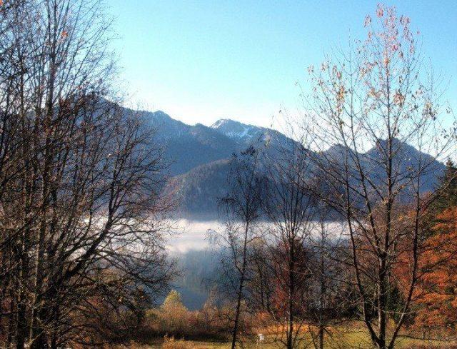 Kochelsee brouillard
