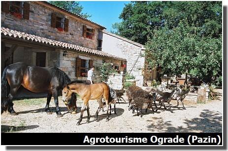 agrotourisme ograde