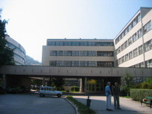 belgrade université