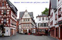 Croisière sur le Rhin en Allemagne : romantique et légendaire 15