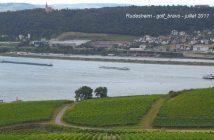 Croisière sur le Rhin en Allemagne : romantique et légendaire 14