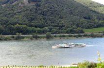 Croisière sur le Rhin en Allemagne : romantique et légendaire 12