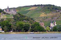 Croisière sur le Rhin en Allemagne : romantique et légendaire 11
