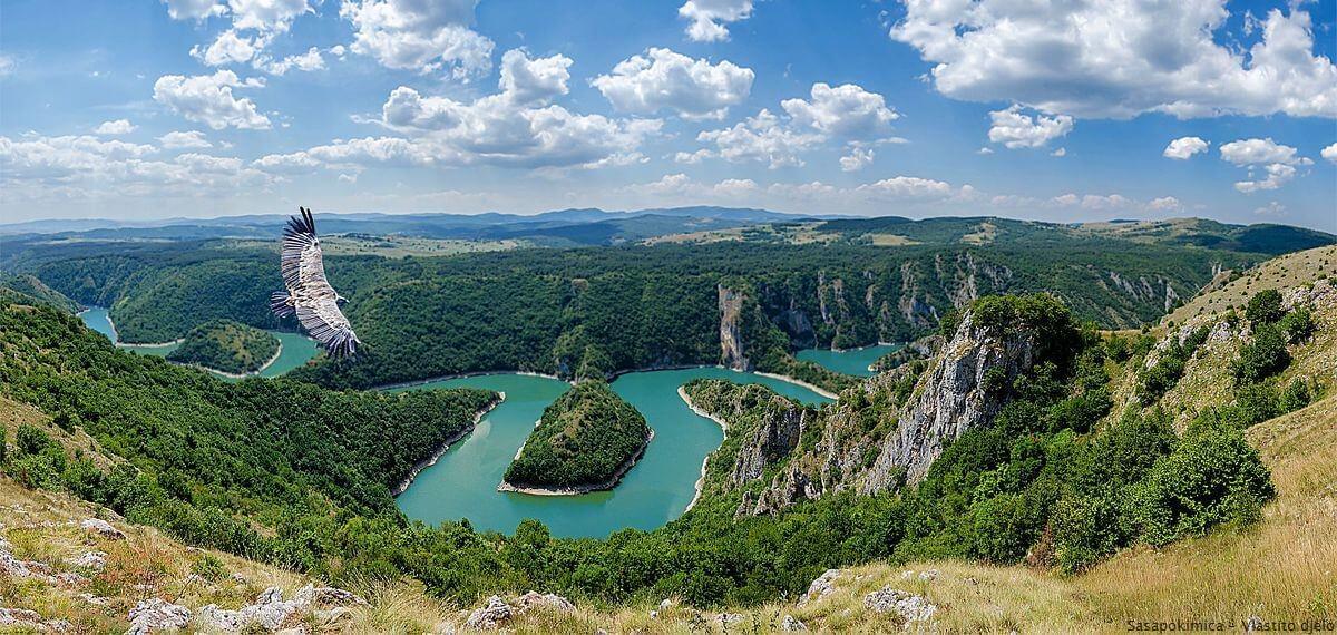 Rivière Uvac en Serbie survolée par un aigle