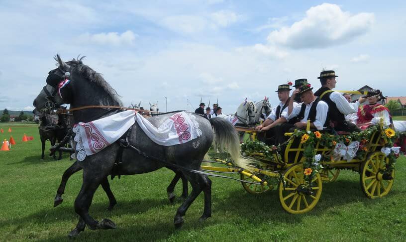 Slavonski Brod calèches défilant lors de la saint Etienne