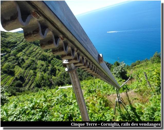 cinque terre corniglia vendanges rails