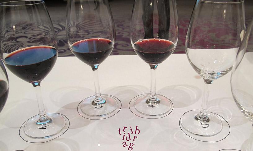 Dégustation de vins croates à Split