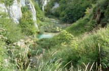 Parc national Plitvice vegetations