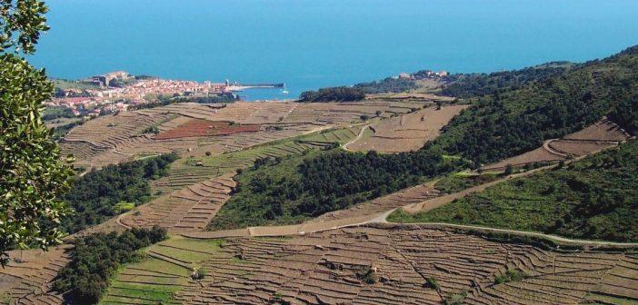 Randonnée Collioure – Cadaques : la Catalogne entre mer et montagne