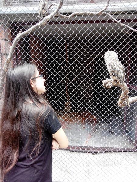 Dans le zoo de belgrade