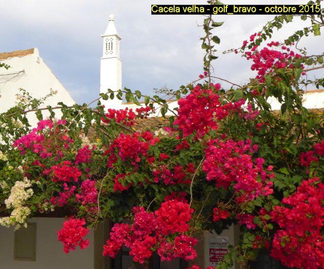 Algarve: à Cacela velha