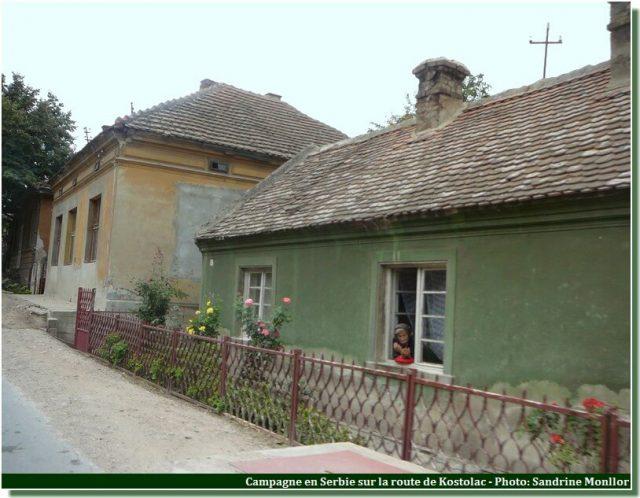 Campagne en serbie sur la route de kostolac