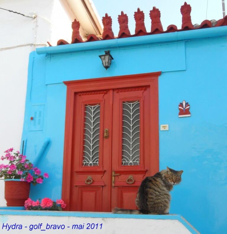 Hydra chat devant une porte