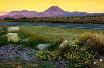 Nouvelle Zélande volcan Tongariro
