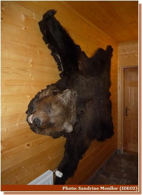 Peau d'ours Mrzlinrgad Plitvice