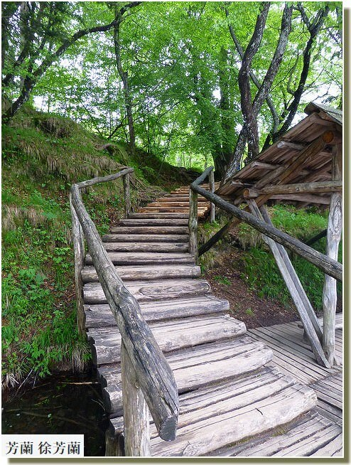 Plitvice escalier de bois