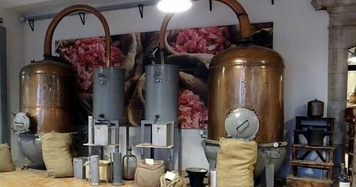 Grasse Capitale Mondiale Du Parfum Tourisme Côte Dazur