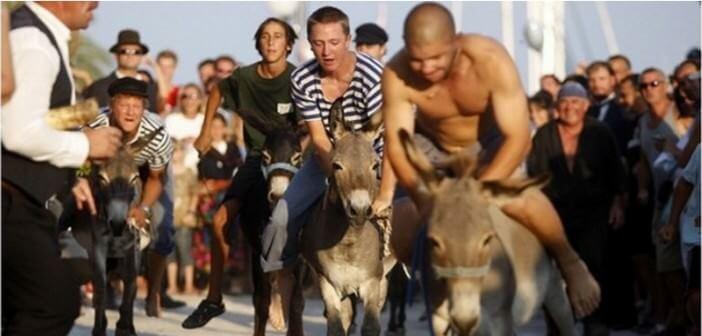 Saljska uzanca festa ; fête traditionnelle de Sali et course d'ânes à Dugi Otok