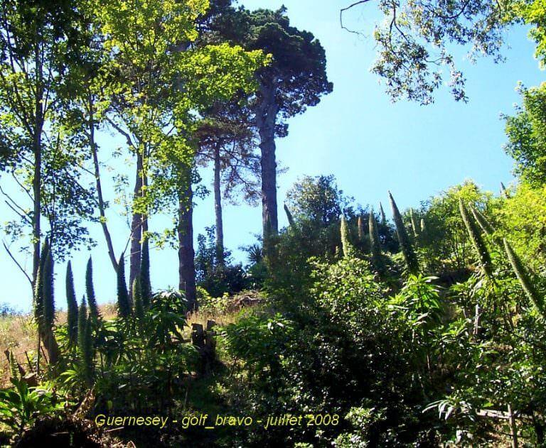Guernesey sentier de randonnée