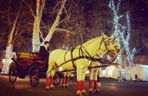 Calèche de Noel Zagreb
