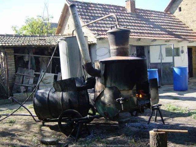 alambic pour préparer le rakija en Serbie
