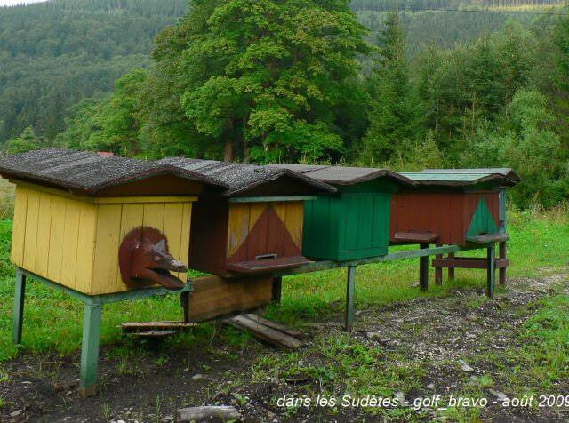pologne sudètes ruches