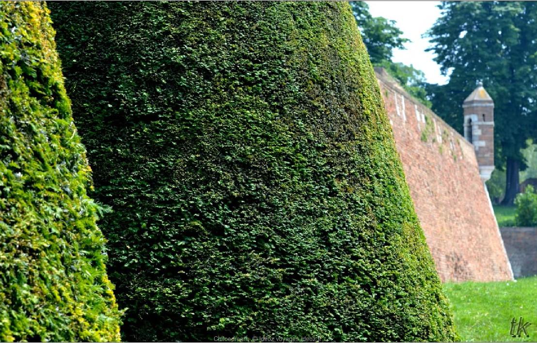 Muraille et verdure dans la forteresse de Kalemegdan à Belgrade