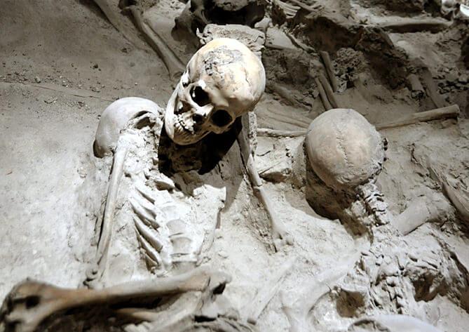 herculanum restes de squelettes