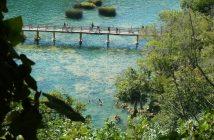 Passerelle sur la rivière dans le parc national Krka