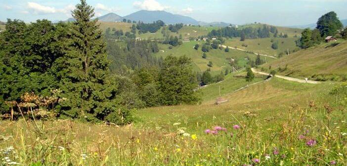 Pays Goutsoul : l'Ukraine profonde, à la rencontre des paysans des Carpates ukraniennes