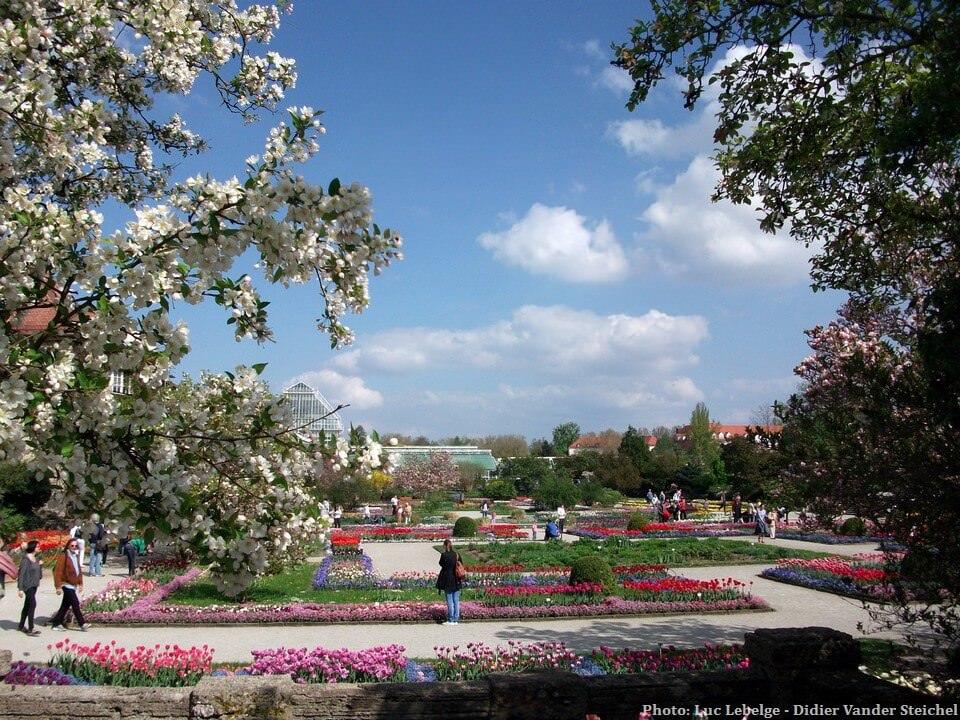 Jardin botanique à Munich au printemps
