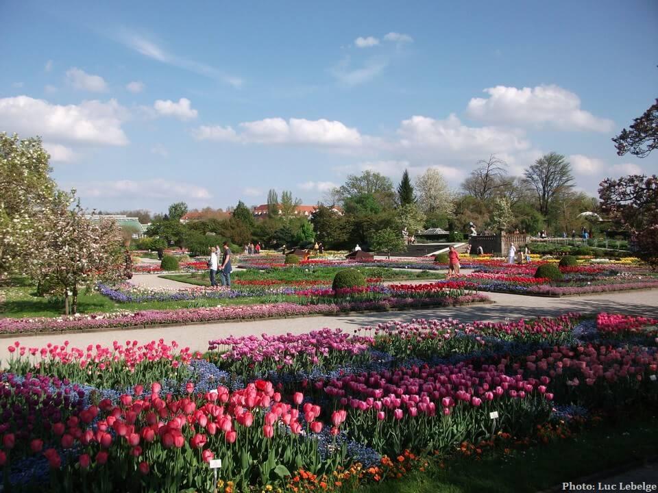 Munich au printemps jardin botanique