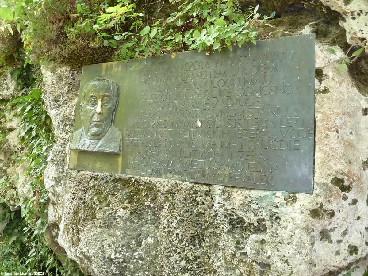 Plitvicka jezera hommage à Ivo Pevalek