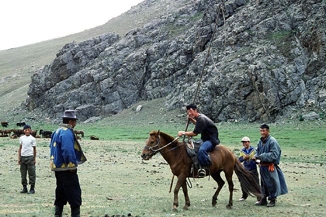 dressage de chevaux mongols