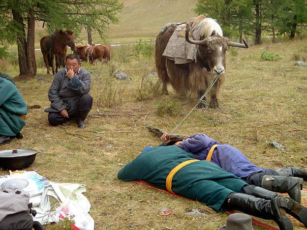 mongolie sieste gawa tserendorj