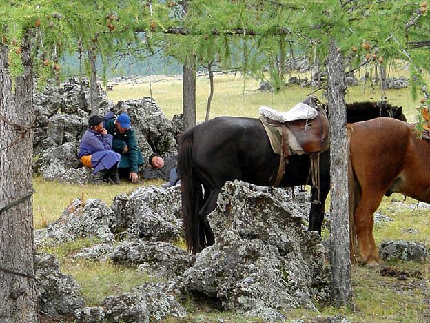 mongolie sous-bois