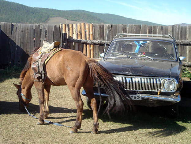 cheval mongol et volga russe