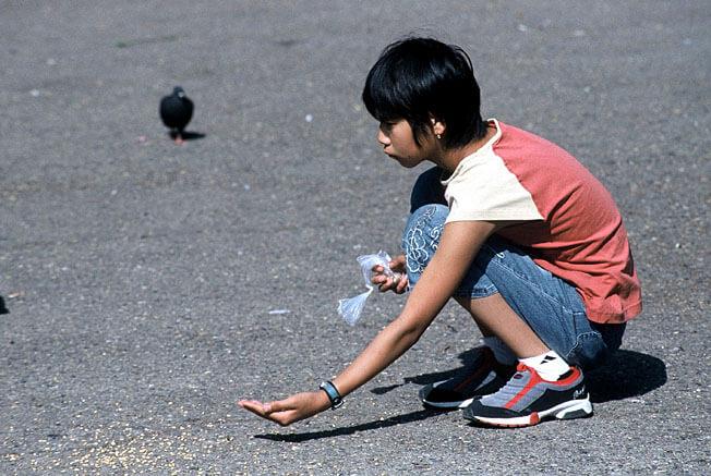 gamine et pigeons oulan bator