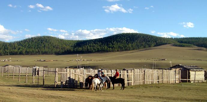 mongolie bat olzii